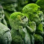 京都っていいなあ。京都を紹介する7,693本の映像から感動の3作品をピックアップ!