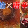 【激辛カップ麺】辛辛魚は辛いだけじゃなくて魚粉が美味しい!【感想】