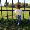 【1歳の娘と】オランダAmsterdamse bos park (アムステルダムス・ボス・パルク) ボス公園へ