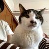 Happy Birthday コタ!! 19歳になりました~