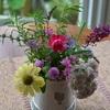 花&野菜の苗購入