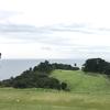 期待以上の面白さ|川奈ホテルゴルフコース大島コース