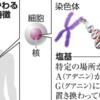 がんを抑制する遺伝子の特徴発見