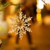【季節の着物コーディネート】冬本番…師走の12月
