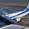 ビーフコンソメスープが楽しみでANA乗ってるのに飲み物サービス中止のお知らせ NH86便搭乗記