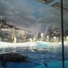 〈リポ〉〈施設紹介〉名古屋港水族館に行って来ました!