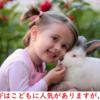 (第2報)スペインでヴィーガン群衆が農場からウサギ強奪カッコイイの筈が、100羽のウサギを大量死させる「ダメすぎるウサギ泥棒 Meat The Victims」の過激な動物活動家ら。報道で叩かれウサギ泥棒の活動は鎮静化するか?/環境テロ組織「動物解放戦線」ALFは今も現役で悪事をなす。/太地沖は絶好調\(^o^)/今季通算6日目の漁の成功/なぜBBCはアホか?捕鯨もホエールウォッチングもどちらも必要。反捕鯨の報道姿勢は子供じみている。 改訂1版