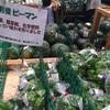 #215 食を充実させたいあなたが福岡県糸島市に移住すべきたった一つの理由