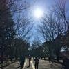 今年最後のランニング@駒沢公園