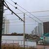 東京都住宅供給公社中野駅前住宅は解体されました。築67年でした (2019年12月)