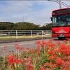 JR九州バス 飯塚線 走行動画 2019年9月30日廃止済み