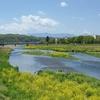 浅川を歩く その1 多摩川合流点から南浅川陵南公園へ
