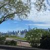 ロックダウン中のニューヨーク、公園を散歩