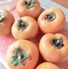 今年もご近所さんの庭の柿が美味しい季節となりました