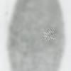 自分の指紋を綺麗に2値画像化する