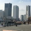 やっぱり今日もひきこもる私(235)私にとっての横浜とは何か。そして、戸籍謄本を取りにいった。