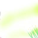 メジロの森 蜜柑を啄む