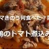 【ドラマきのう何食べた?】第3話 あらすじと「鶏のトマト煮込み」実食レビュー!^^