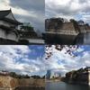大阪城界隈散歩。