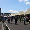 波佐見陶器まつり2019 人気の長崎の焼き物市