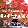 紅葉シーズンピークの京都をゆっくり満喫。穴場スポットを巡る旅