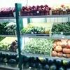 州政府公認??バンガロールの八百屋さんには観葉植物も売っている!