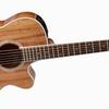 【機材#010】ネットで見つけた気になるギター②:Takamine PTU131KC N 〜 (自分に対して)買うなよ 絶対買うなよ