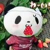 お買いものパンダ 王子の雑記ブログ パート24