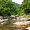 初夏の渓へ