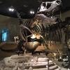 科学博物館の深海展に行ってきた