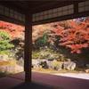 京都のアメックスラウンジで紅葉のまき♩