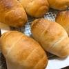 発酵バターでロールパン