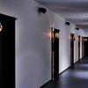No.245  日本青年館竣工2周年事業紹介~「木の灯り」観覧希望者ご招待