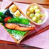 【お弁当】銀鮭の京粕漬け焼き弁当20180626