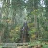 太陽に感謝!初冬の大岳山(愛宕山〜鋸山〜大岳山〜御岳山・奥多摩)