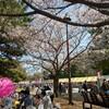 葛西臨海公園に家族で花見遠足! 小さい子供がいても楽しめるのか?