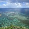 沖縄に行ったら絶対見たいサンゴ礁!じつはいま大きな問題が!?