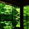 新緑が綺麗な京都の瑠璃光院。SNS映え間違いなしです!