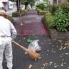 台風一過の清掃