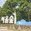 2019韓国の旅 秋 9