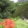【滋賀の旅5】美と強さを兼ね備えた国宝 彦根城を歩く その2