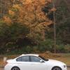 BMW320dスポーツラインを撮った場所で、とってみた!