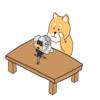 AKASOの新しいカメラ「AKASO Brave7」がやっと届いた!~開封編~