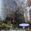 平塚、東京ミッションを行います(^^)/