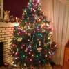 【失敗談】カナダのクリスマスの様子が見たくて海外旅行してみたら・・・