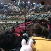 スキウサギの旅②日本武道館