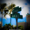 アベニューとストリート・・ハワイは特別?