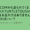 お名前.comから送られてくるドメインプロテクションの「過日登録されたturtletoushi.comの設定をお忘れではありませんか?」はどうすればいい?