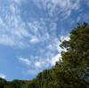 昨日のヘブン 20121011 すりばち山