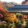 秋の庭園巡り・伊豆編②。修善寺・修禅寺庭園、伊豆長岡・三養荘庭園 など